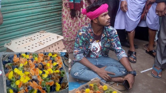 পোলট্রি মুরগির বাচ্চার গায়ে বিভিন্ন রং লাগিয়ে বিদেশি উন্নতজাতের বাচ্চা বলে প্রতারণার